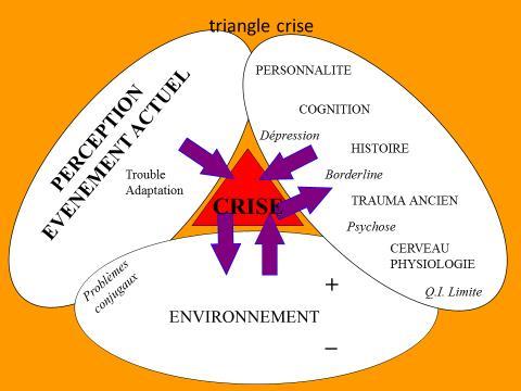 Urgences et crises en psychothérapie